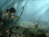 Lara Croft Tomb Raider 9